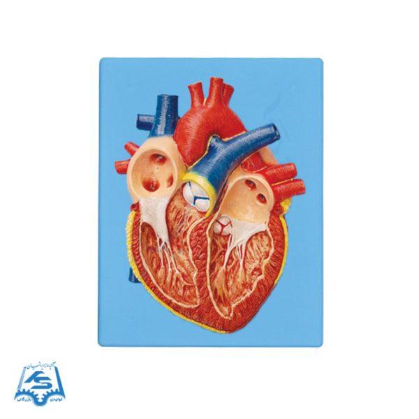 مولاژ قلب (دیواری)